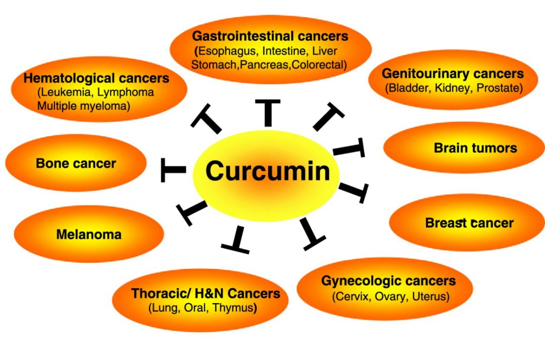 Cancers targeted by curcumin